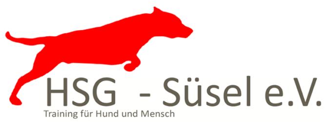 HSG-Süsel